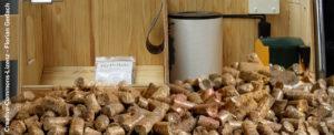 Praxis für den Alltag: BEG EM für Biomasseheizungen am 14.07.2021